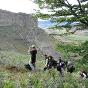 observation de condors Patagonie