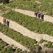 restauration des terrasses ruta de las misiones
