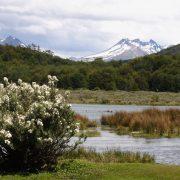 Baie de Lapataia, Ushuaia