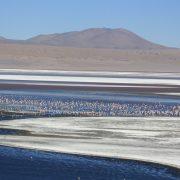 lac de l'altiplano
